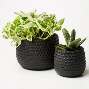 Hobnail Planter Set Black 1