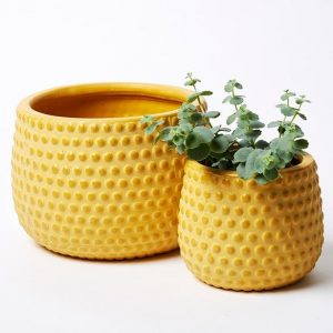 Hobnail Planter Set Mustard