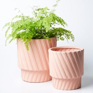 Living Decor, Pots & Plants